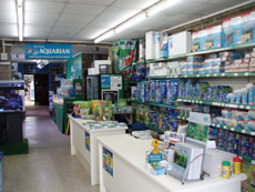 View of Counters at Hobby Fish